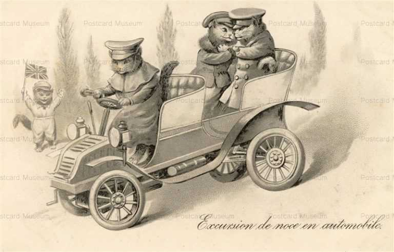 acb019-Dressed Cats Automobile Marriage Honey Moon Excursion de noce en automobile