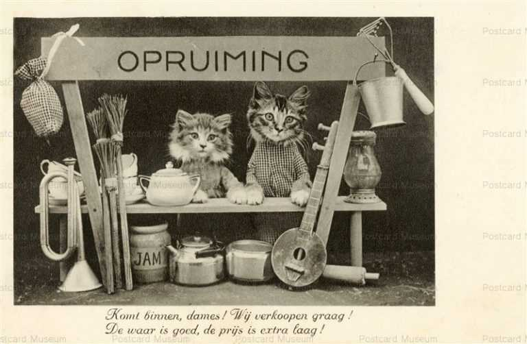 acb022-Opruiming Shop 2Cat