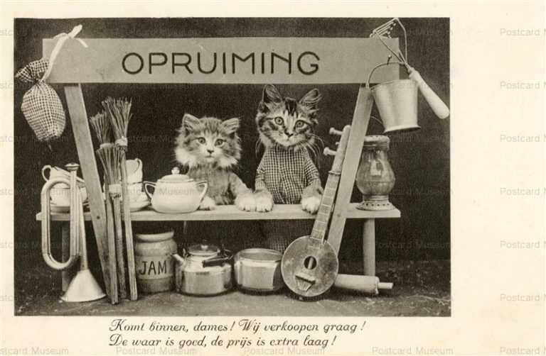 acb022-Opruiming Shop 2Cat