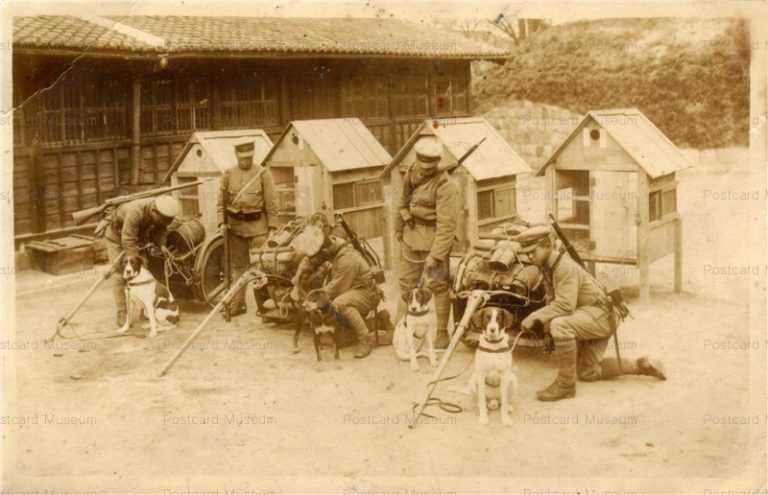 cga001-軍用犬