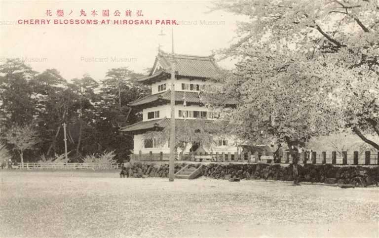 eb530-Cherry Blossoms Hirosaki Park 弘前公園本丸の桜
