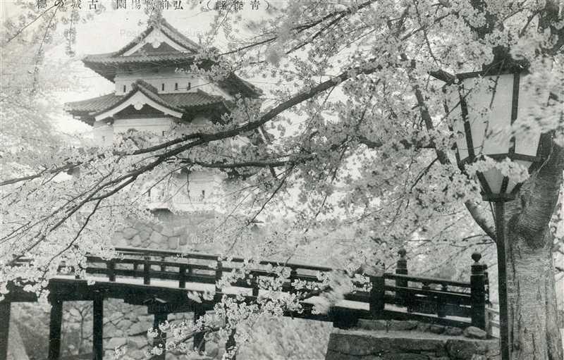eb545-Hirosaki Catsle Blossom 弘前鷹揚場園 古城の櫻