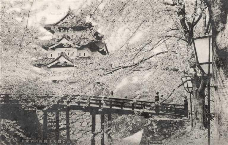 eb550-Hirosaki Park 弘前公園天守閣付近の桜花
