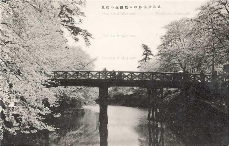 eb554-Hirosaki Park 弘前公園杉の大橋付近の桜花