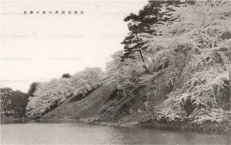eb556-Hirosaki Park 弘前公園西の廓の桜花