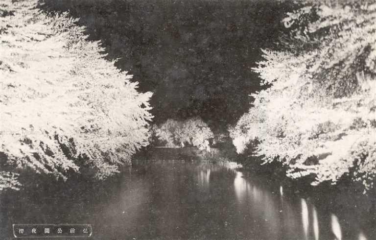 eb558-Hirosaki Park 弘前公園夜桜