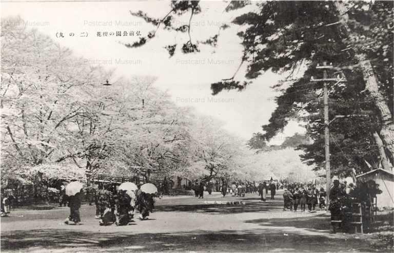 eb560-Hirosaki Castle Ninomaru 弘前公園の桜花 二の丸