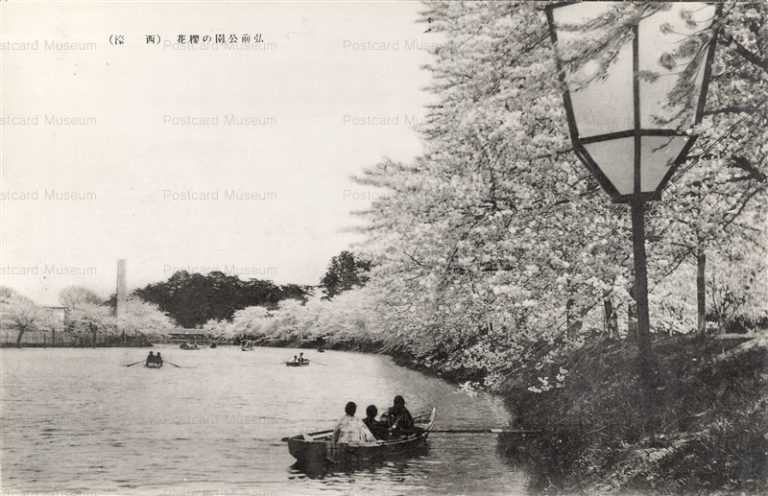 eb562-Hirosaki Castle Nishibori 弘前公園の桜花 西濠
