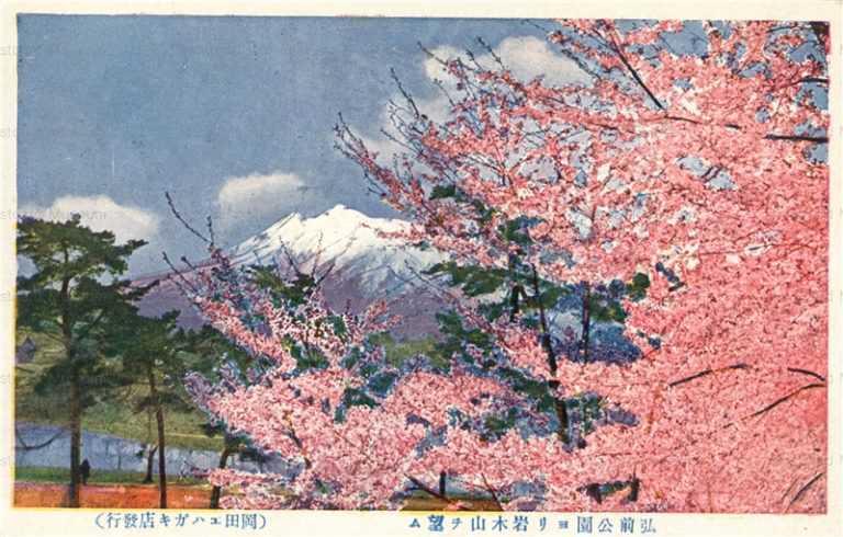eb576-Hirosaki Park Honmaru  弘前公園ヨリ岩木山望ム