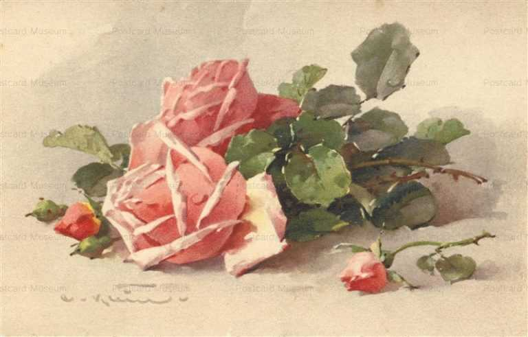 em078-Catherine Klein Pink Rose