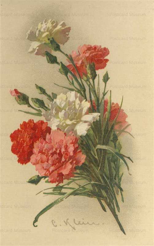 em086-Catherine Klein Big Bunch White Pink Red Carnations