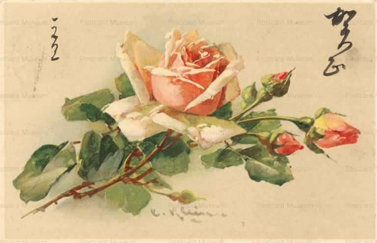 em092-Catherine Klein Pink Roses