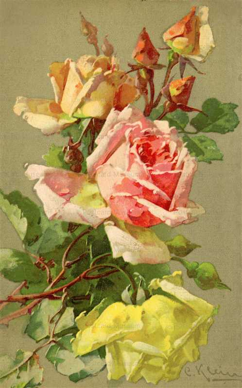 em100-Catherine Klein Pink Yellow Roses