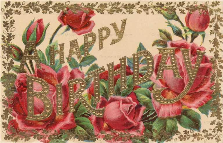 em807-Rose Birthday