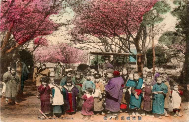 fb150-子供達 横浜掃部山 桜
