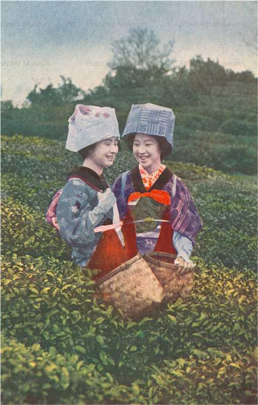 fk080-茶畑 茶摘娘二人の談笑