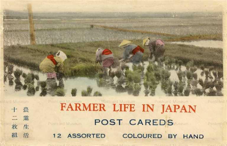 fk160-農業生活 12枚組 袋  田植え