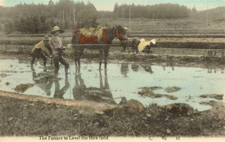 fk164-田均し 農業生活 12枚組