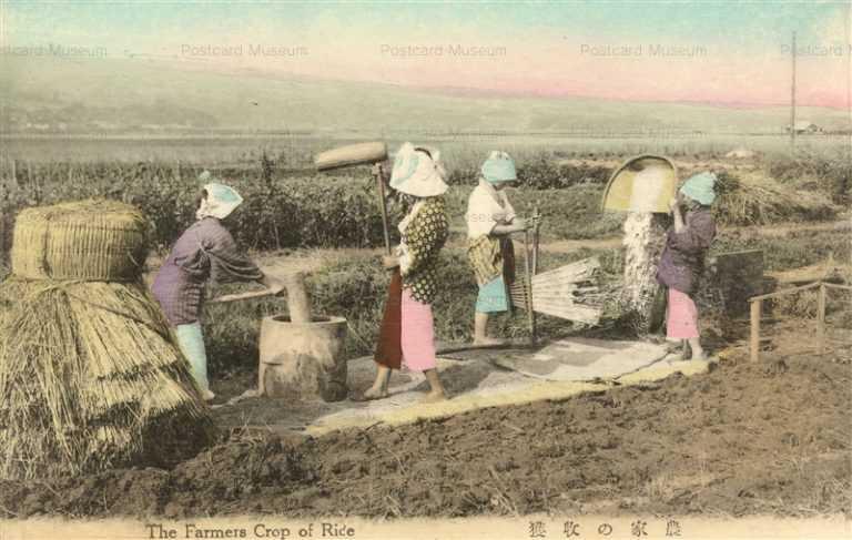 fk167-農家の牧獲 農業生活 12枚組
