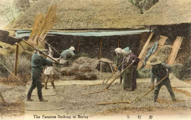 fk169-麦打ち 農業生活 12枚組