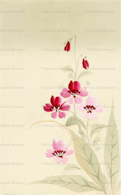 kfg184-赤い花
