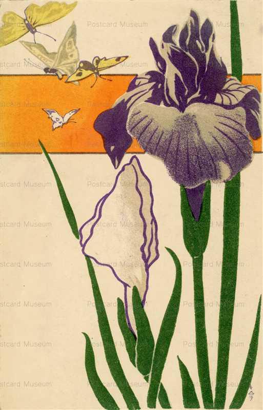 kfg330-菖蒲と蝶