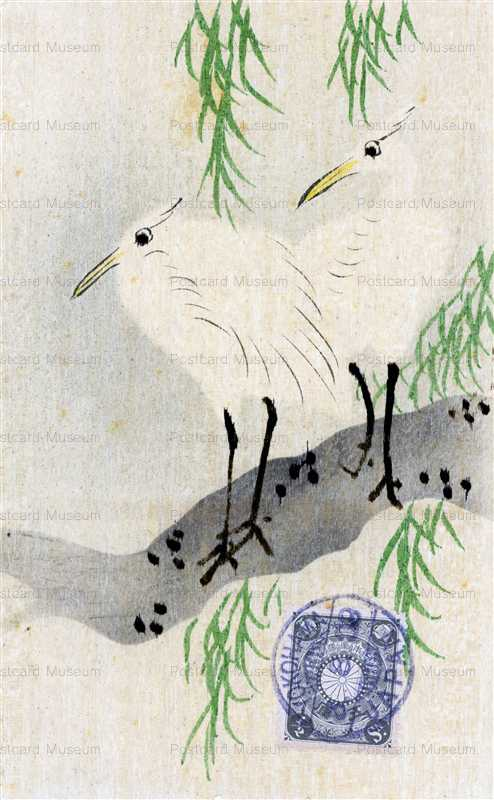 kfg885-白鷺