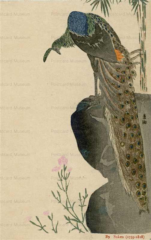 kfg890-孔雀 Soken 1759-1818