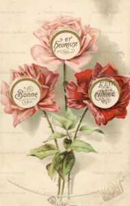 mx020-Mechanical Rose Flower Greeting