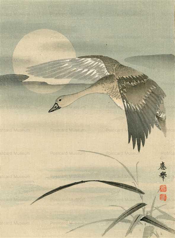 円山応挙の画像 p1_33
