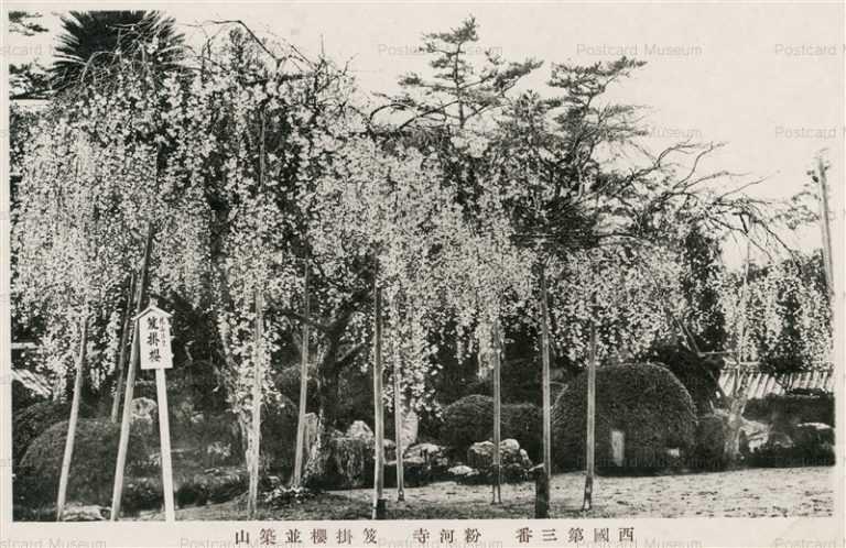 zy530-Kokawadera 笈掛櫻並築山 粉河寺
