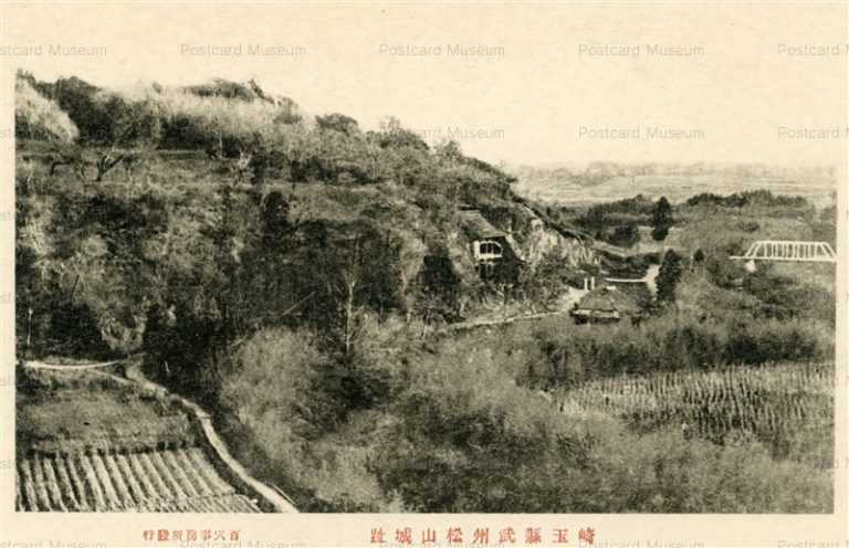 ls430-Bushyu Matsuyama Castle 埼玉縣武州松山城跡