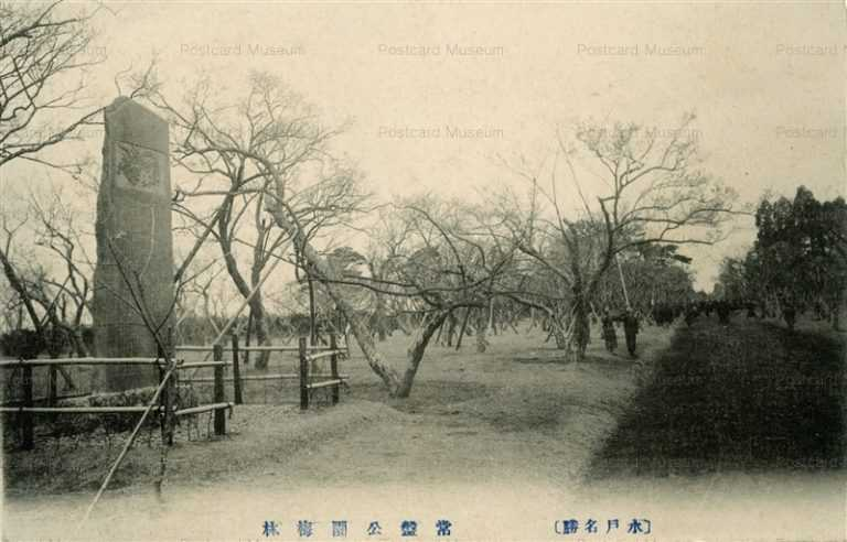 ll122-Tokiwa Park Plum Grove Ibaraki 常盤公園梅林 茨城