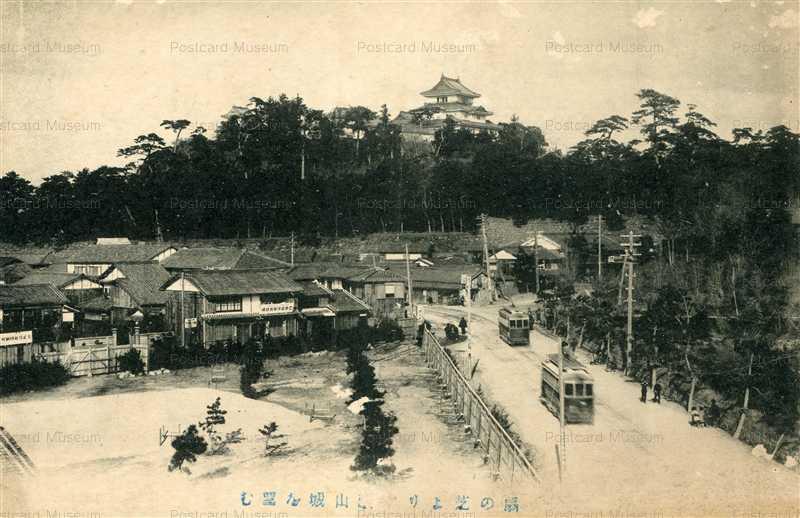 zy134-Wakayama castle 扇の芝より和歌山城を望む