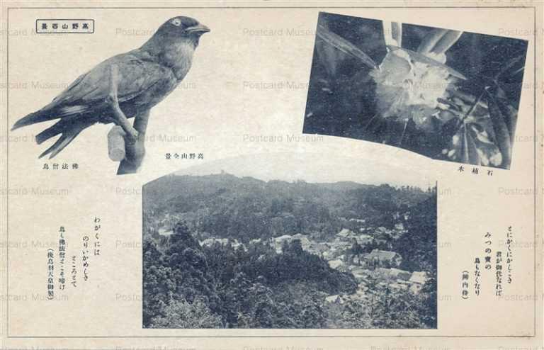 zy505-Koyasan 高野山百景 高野山全景と仏法僧鳥
