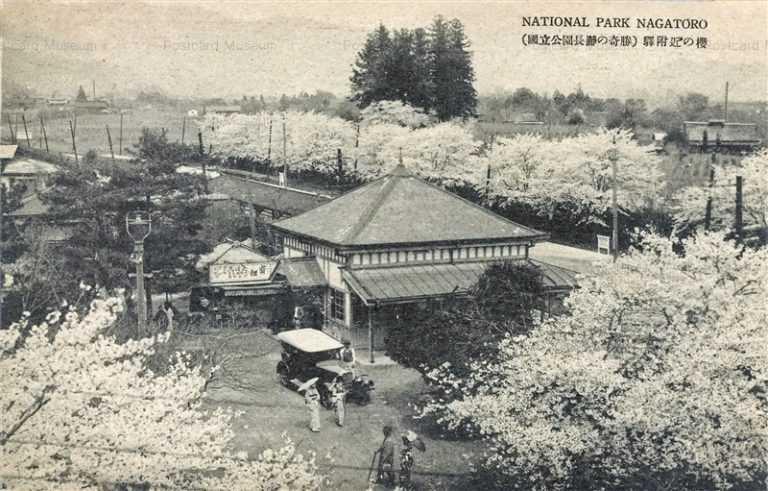 ls605-National Park Nagatoro 国立公園長瀞の奇勝 駅付近の櫻