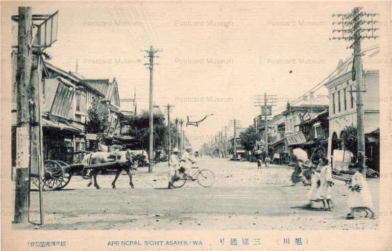 ha400-Sanjodori Asahikawao 旭川三条通り
