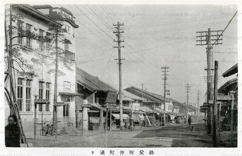 ls480-Nakamachidori Chichibu 秩父町仲町通り
