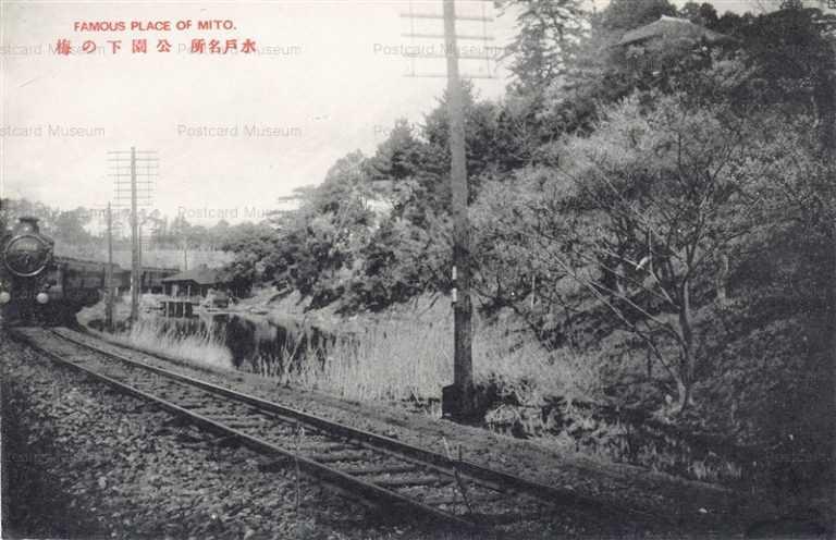 ll107-Plum grove Mito park Ibaraki 公園下の梅 水戸 茨城