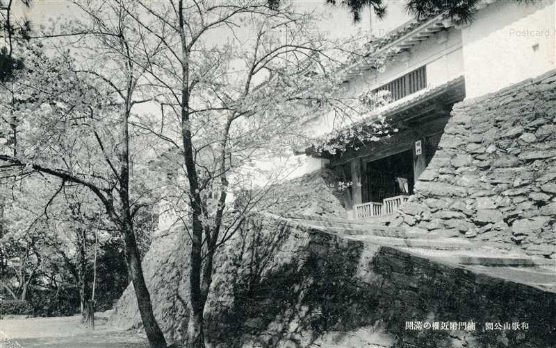 zy148-Wakayama park 和歌山公園 楠門附近櫻の満開