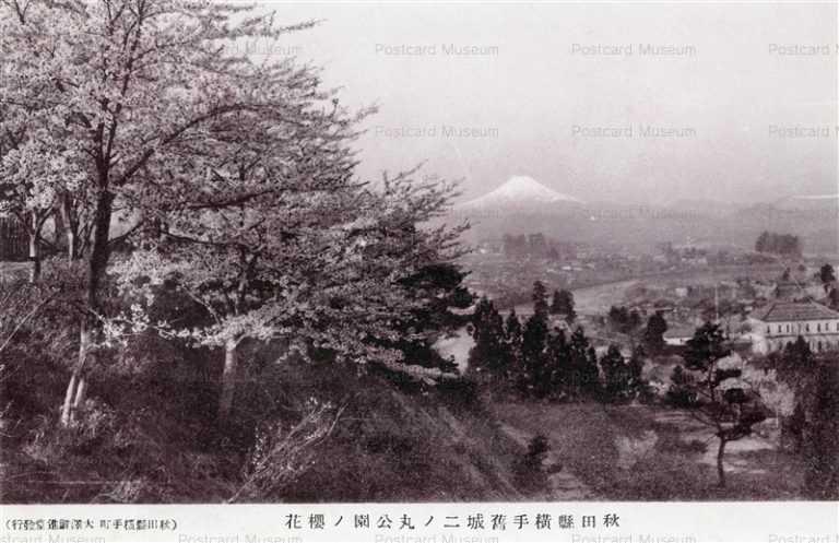 er857-Yokotecho Park 秋田県横手旧城二ノ丸公園ノ桜花