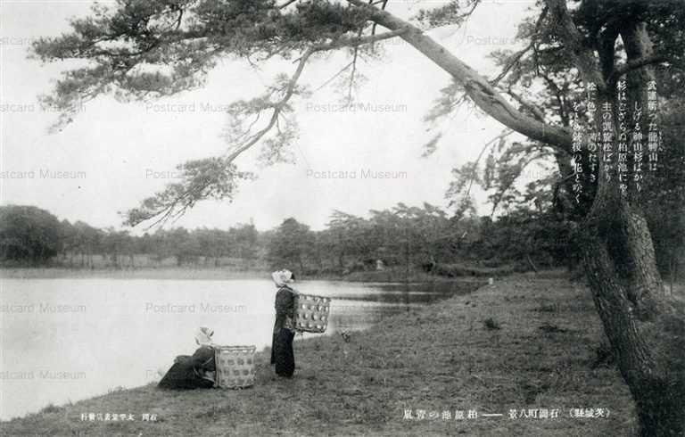 ll905-Kashiwabaraike Ishioka Ibaraki 柏原池の靑嵐 石岡町八景 茨城