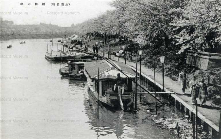 ll820-Sakurabawa Tsuchiura Ibaraki 櫻川の櫻 土浦