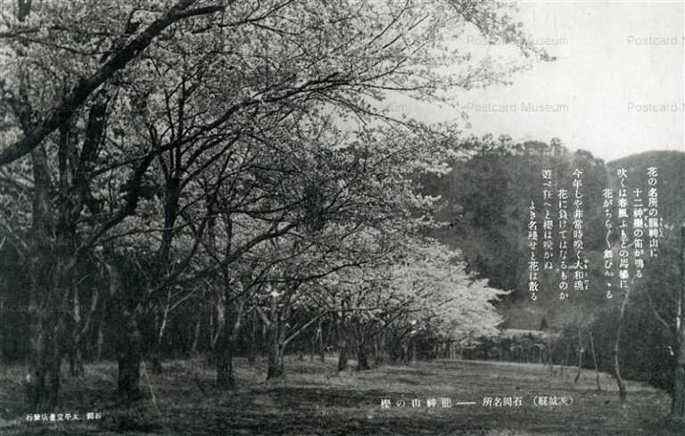 ll915-Ryujinyama Ishioka Ibaraki 龍神山の櫻 石岡 茨城
