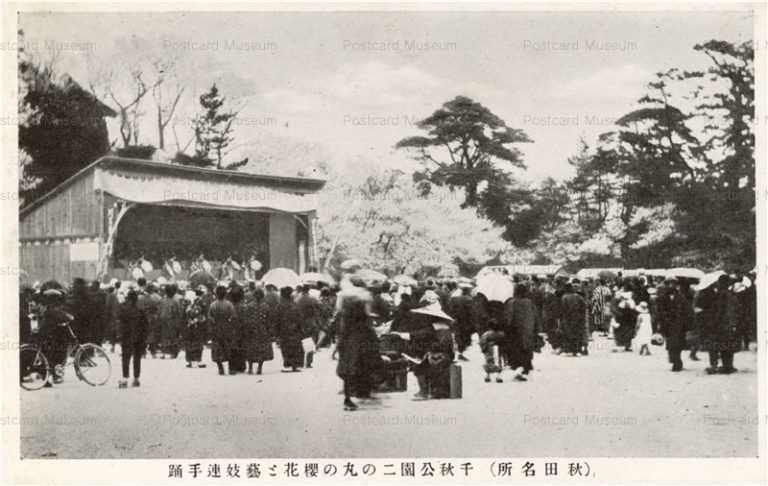 er297-Sensyu Park Akita 千秋公園二の丸の桜花と芸妓連手踊 秋田