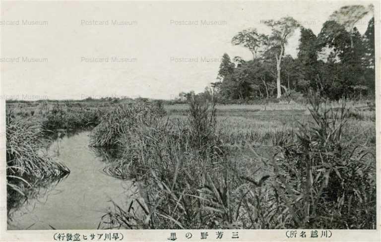 ls380-Miyoshinosato Kawagoe 三芳の里 川越名所