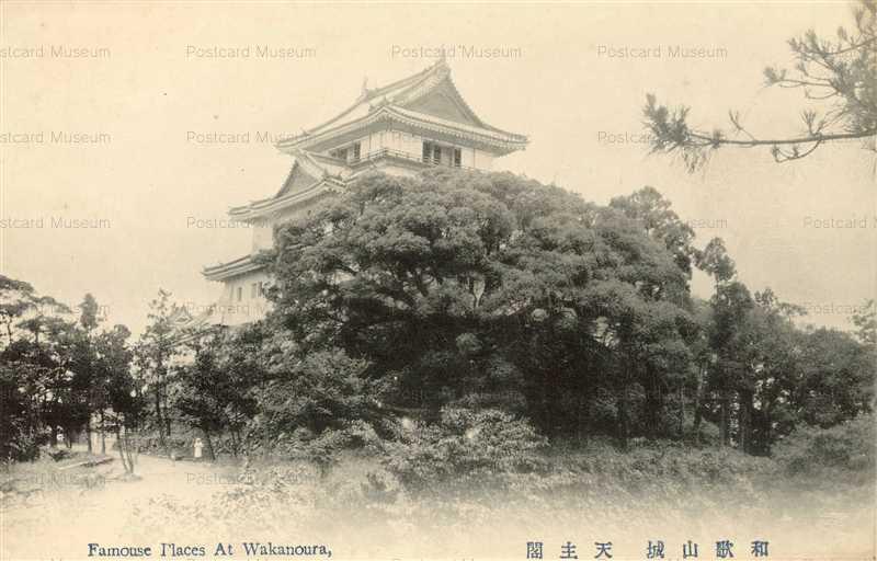 zy150-Wakayama Castle 和歌山城 天守閣