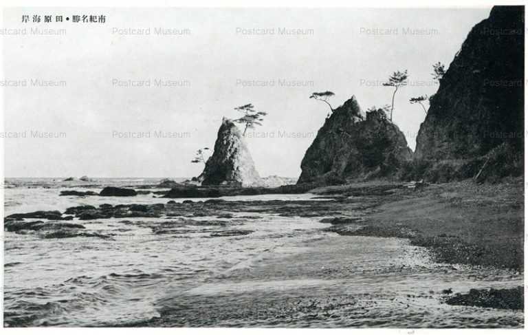zy660-Tahara 田原海岸 南紀