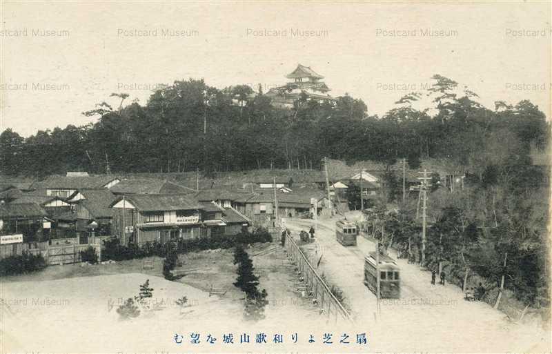 zy132-Wakayama castle 扇之芝より和歌山城を望む