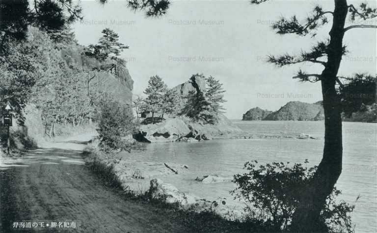 zy586-Tamanoura Nanki 玉の浦海岸 南紀